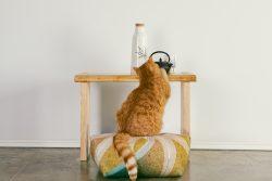 Ojamis Weed Mini Meditation Cushion